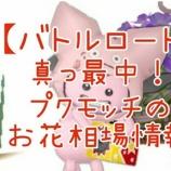 『【バトルロード】真っ最中!プクモッチのお花相場情報2/19』の画像