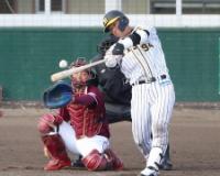 【阪神】原口が猛打賞「練習でやっていること出せた」
