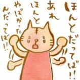 『(昔の話)チキンヤマコ』の画像