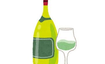 赤ワインあるけど味が苦手という人は今すぐアレをブチ込めば美味しく飲めるかもしれない話