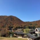 『立杭の秋』の画像