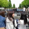 2017年横浜開港記念みなと祭ヨコハマカワイイパーク その28(JUNON SUPERBOY ANOTHERS)