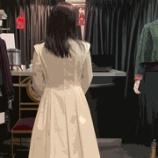 『新作コートのトワル』の画像
