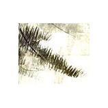 『松林屏風図(2)』の画像