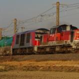 『【重連貨物】DD51+DF200の臨8075レ』の画像