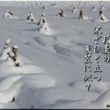 『寒ざむと立つ』の画像