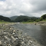 『小鮎と遊ぶ 9(6/28 安曇川・長尾)』の画像