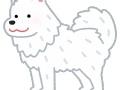 ACジャパンの犬のCMの女の子wwwww(動画あり)
