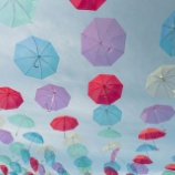 『【梅雨の季節だし有効活用しよう!】最大100%オフ!雨の日にとってもお得になる観光スポット5選』の画像