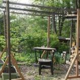 『花豆の柵』の画像