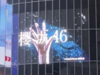 """櫻坂46のカラーはピンクではなく""""白""""!!!!!!"""