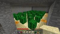 雪国の露出峡谷に農地を組み込む (2)