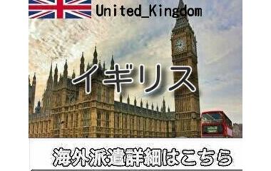 『イギリスインコール求人情報』の画像