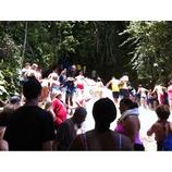 『allure in Jamaica』の画像