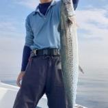 『釣りを満喫』の画像