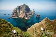 独島の四季の写真112枚、著作権を気にすることなく誰でも自由に使うことができる