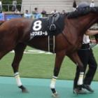 『三浦特別(1000万下)の優勝馬がTCK女王盃に…』の画像