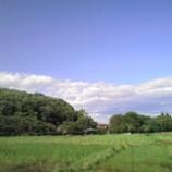 『新緑の力』の画像