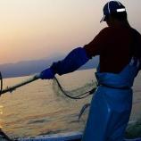 『漁師なんだがおまえらに言いたいことがある』の画像