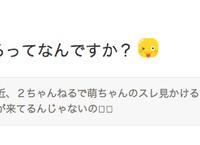 【AKB48】相笠萌「2ちゃんねるってなんですか?」