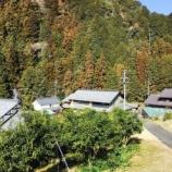 『JAバンクのCM「ゆず編」の舞台である岐阜県関市上之保に驚き!「かみのほゆず」という名の会社があるんですよ。そしてCM現場へ。』の画像