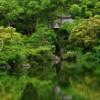 新緑の滝頭公園