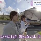 『【乃木坂46】白石麻衣『パパから連絡が来なくなった・・・』』の画像