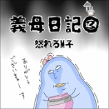 『義母日記③怒れるM子』の画像
