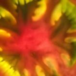 『たべごとまわりのおはなし ひからび玉葱のチャーハン』の画像