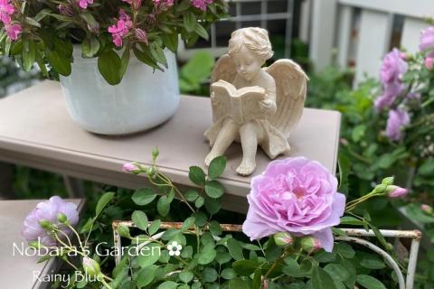 まるでヨーロッパ! 咲きほこる花たちに癒されるガーデニングブログ
