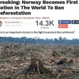 『ノルウェイ森林破壊へ取り組みへ』の画像