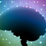 """機械へ意識をアップロード? 東大准教授、不老不死への挑戦 研究の活力は""""死への恐怖"""""""