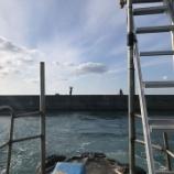 『紀州アジ釣り、今年の最終はアジ釣り(防波堤 in 和歌山 2020/12/26)』の画像