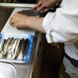 『理系の男子は魚をさばくのが上手だ』の画像
