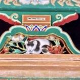 『栃木に遊びに行ったよ 前編・日光東照宮〜鬼怒川温泉』の画像