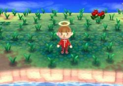 【どうぶつの森スマホアプリ】放置したら雑草生えたりゴキブリ出たりするシステムさえ無ければ神ゲーだったと思う!!→その理由!!