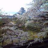 『来年の春までお預け』の画像