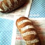 『ホシノ酵母 雑穀パンと編みパン』の画像