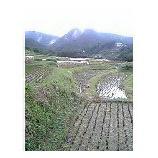 『棚田から昔の田園風景を見る』の画像