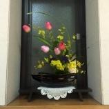 『今月の待合室の花 2015年2月』の画像
