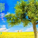 『遂に欅坂46 2期生メンバーがスタジオ初登場!番組恒例?の自撮りVTRをもとに、スタジオでは特技の披露!』の画像