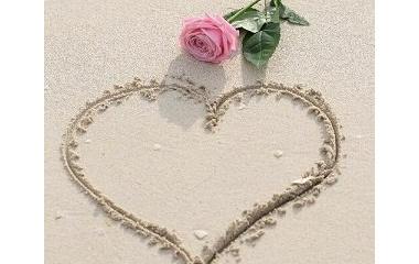 『一粒の砂』の画像