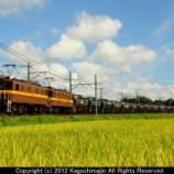 『三岐鉄道 ED45形 セメント貨物』の画像