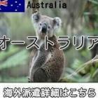 『オーストラリアインコールorアウトコール求人情報』の画像