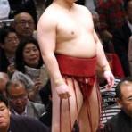 大相撲!土俵の目撃者