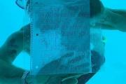 【悲報】「水中プロポーズ」の米国人男性、海に潜ったまま戻らず死亡。相手女性「私の答えは100万回のイエスだったのに」。タンザニア