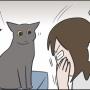 我が家の猫の怒りポイントの違い