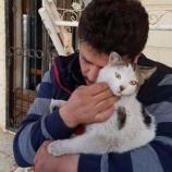 『シリアの猫たちに再び光:アレッポの猫男復活』の画像
