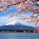 『【驚愕】昔の日本経済成長率凄すぎて草!なお、2020年現在の成長率・・・・・』の画像