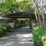 『10月末の国営昭和記念公園Ⅱ;立川市』の画像